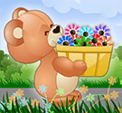 Gấu con hứng hoa