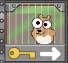 giai-cuu-hamster