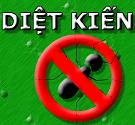 diet-kien