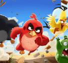 Angry Bird kẻ trừng phạt