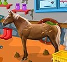 Dọn dẹp nông trại ngựa