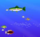 Cuộc sống đại dương