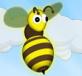 Ong tìm đường