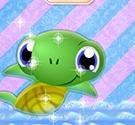 Vệ sinh cho rùa