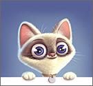 Tìm hình mèo con